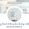 Ideas for Choosing Nursery Paint Colors for Baby